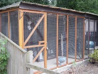 Bluehaze Cattery 261609 Image 2