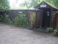 Bluehaze Cattery 261609 Image 3