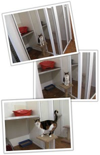 Purfect Boarding Kennels and Cattery 261448 Image 1